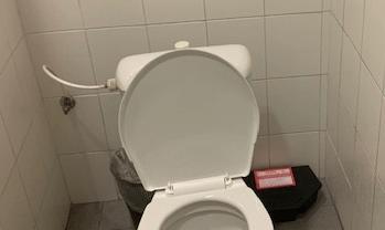 Stanička na toaletě