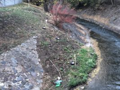 Deratizace vodního toku Rokytka